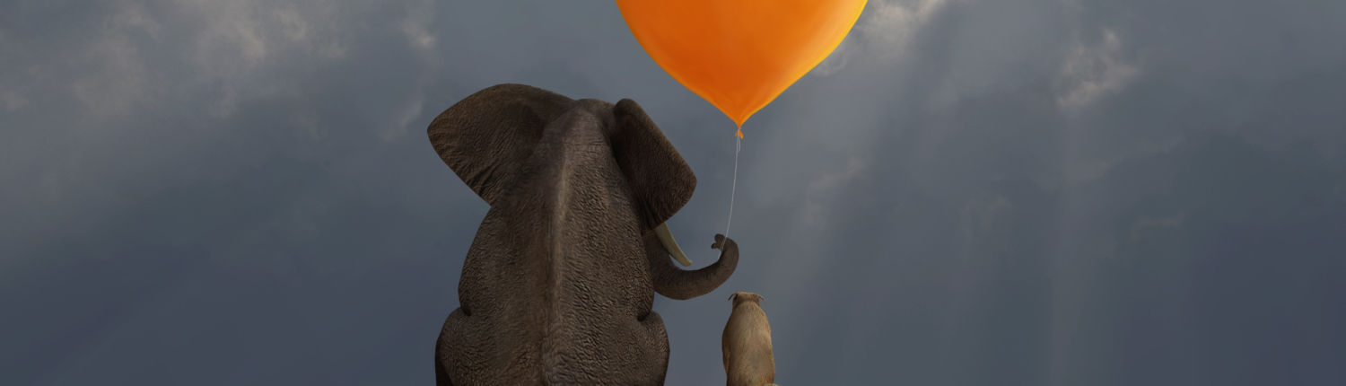 Our Elephant and friend with an orange heart shaped balloon
